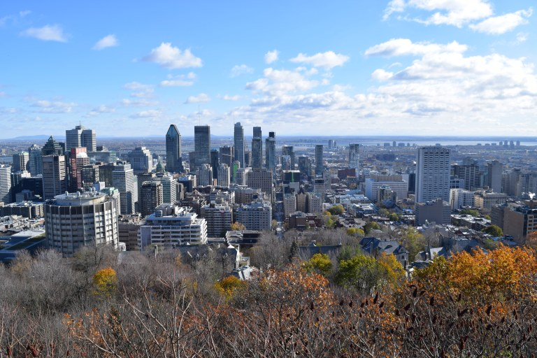 views from Mt. Royal Montreal