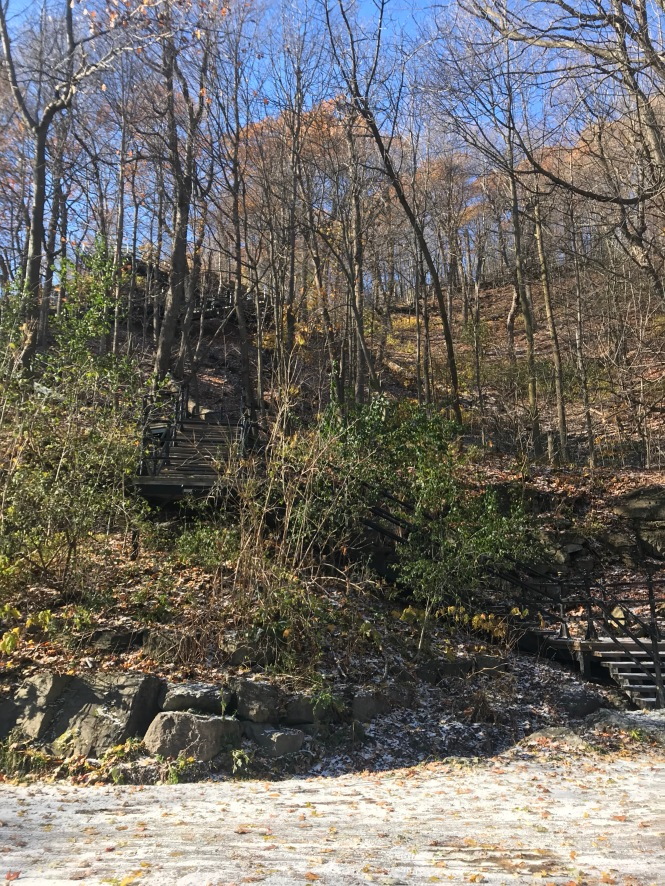 steps to Mt Royal Montreal